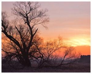 Morgenlandschaft