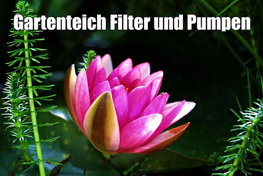 Gartenteich Filter Pumpen