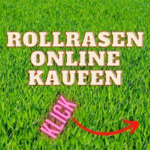 Rollrasen online kaufen